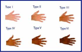 Six Tanning Skin Types